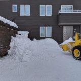 冬のお仕事